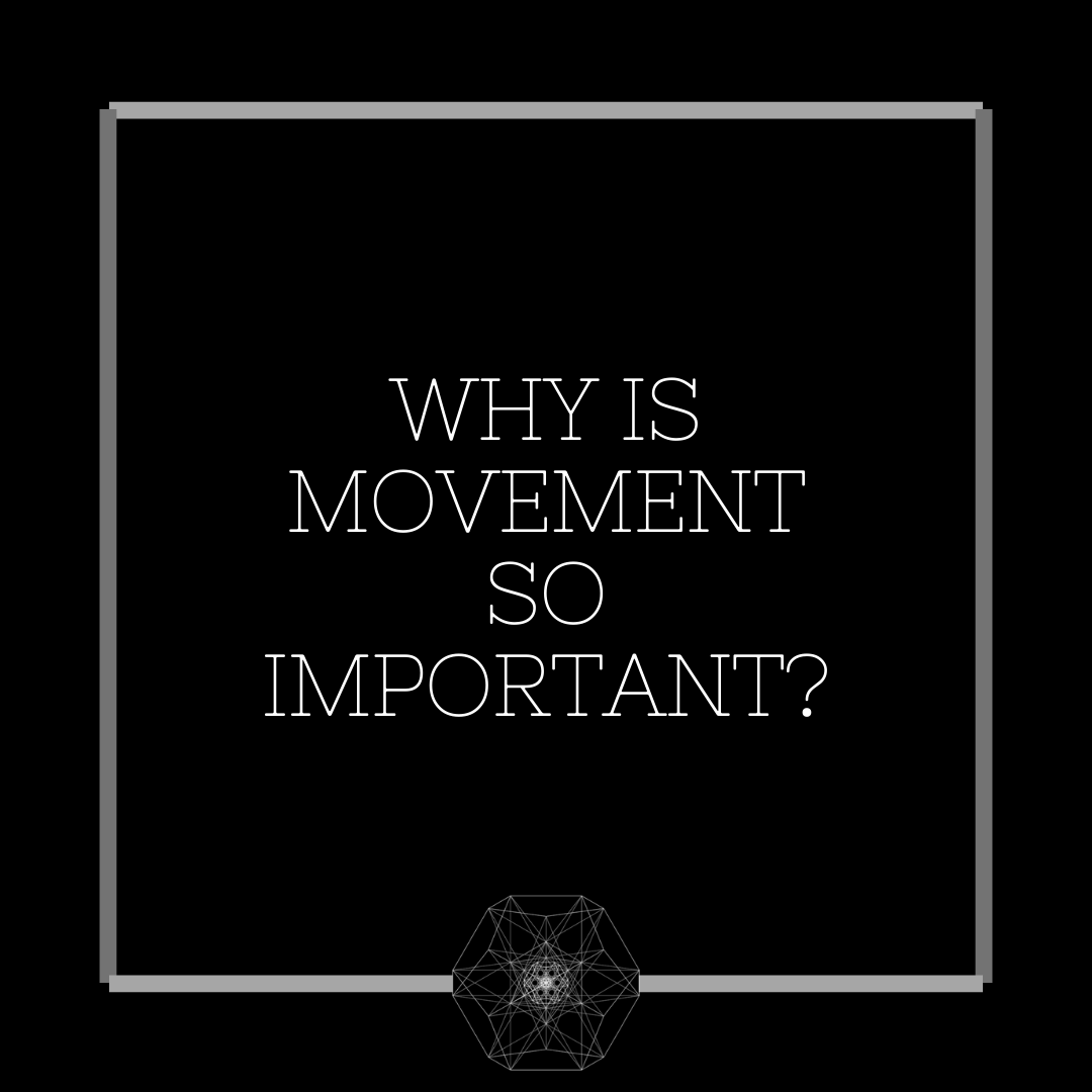 Why Is Movement So Important?